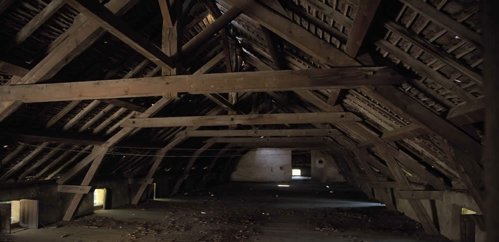 Inside an Historic Roof - Nicholson Price Associates